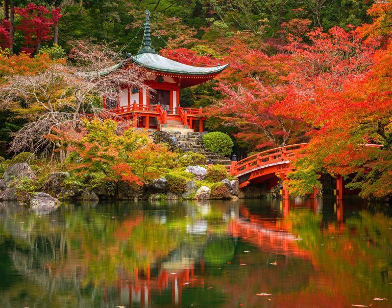 Hidden Tourist Spot London - Kyoto Gardens London